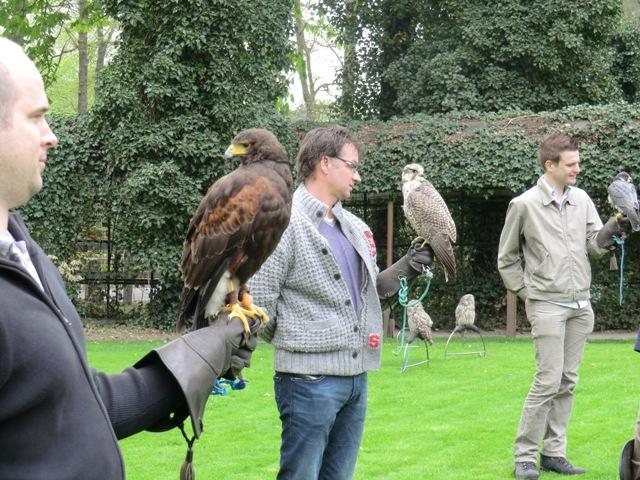 Roofvogelshow Hulsbeek Events